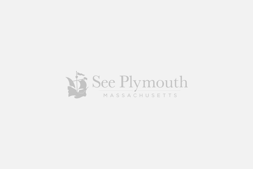 Plymouth Placeholder