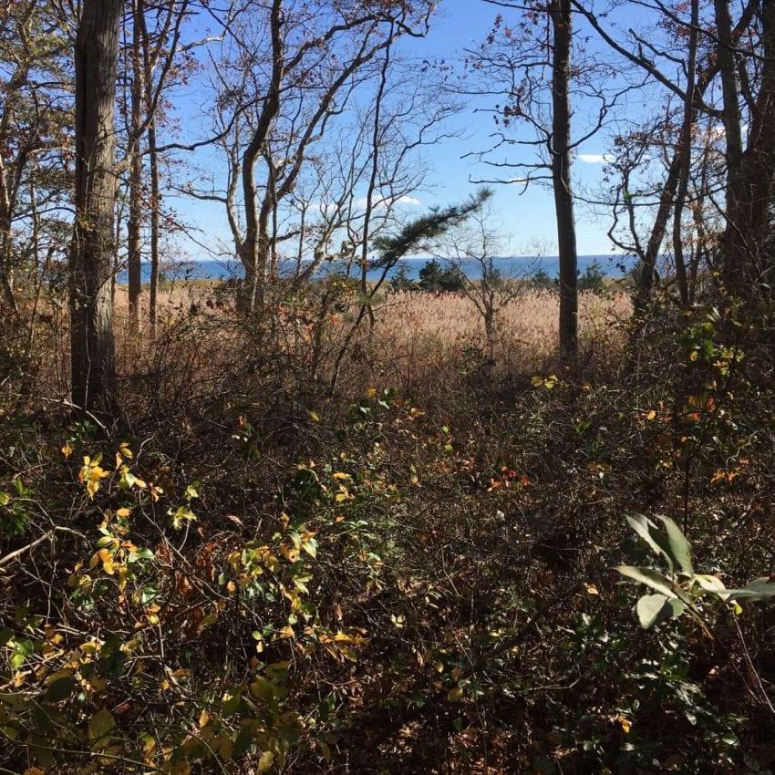 Center Hill Preserve Plymouth MA