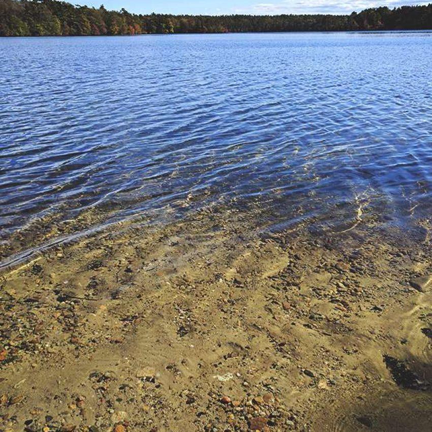 Halfway Pond