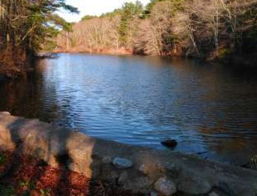 Russell Sawmill Pond