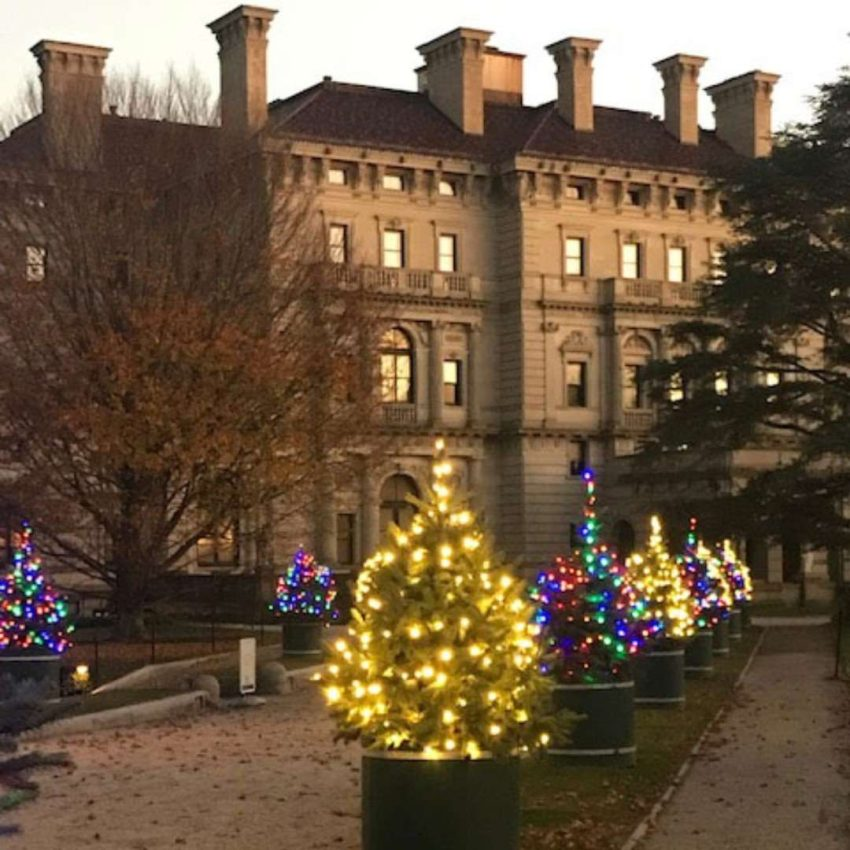 Christmas trees outdoors Newport Mansions