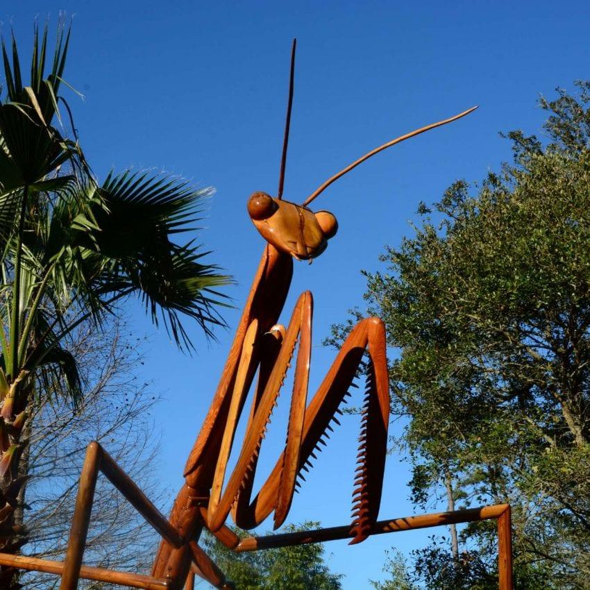 Newport Mansions Big Bugs Exhibit