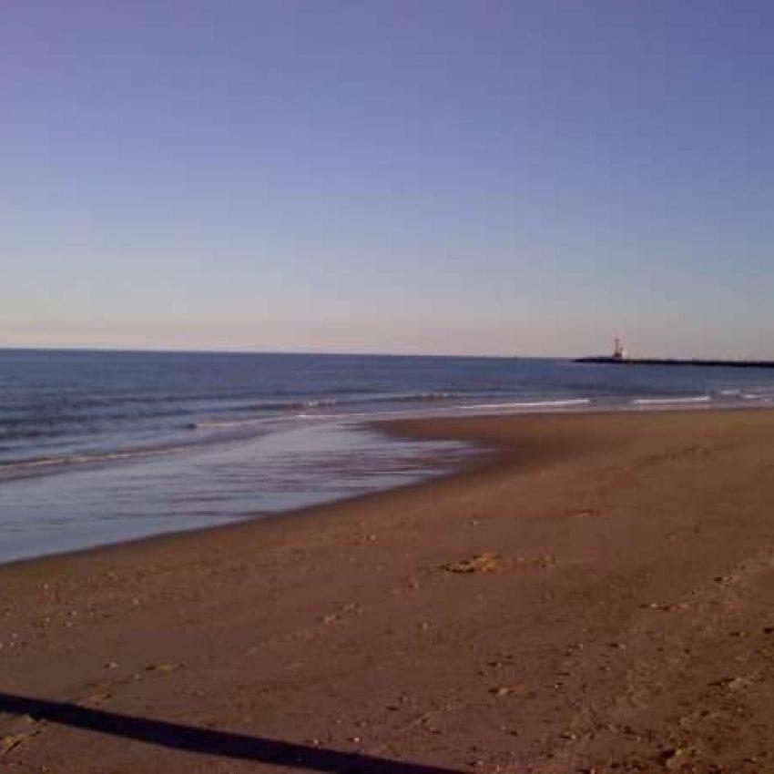 Scusset Beach S