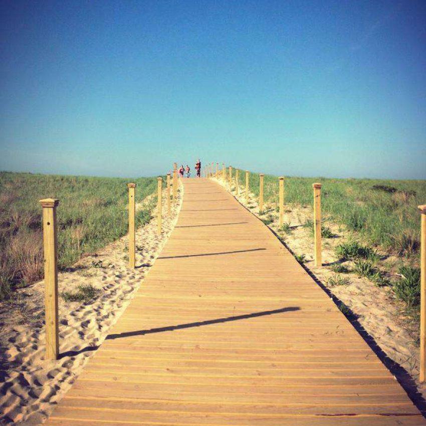 Scusset Beach boardwalk
