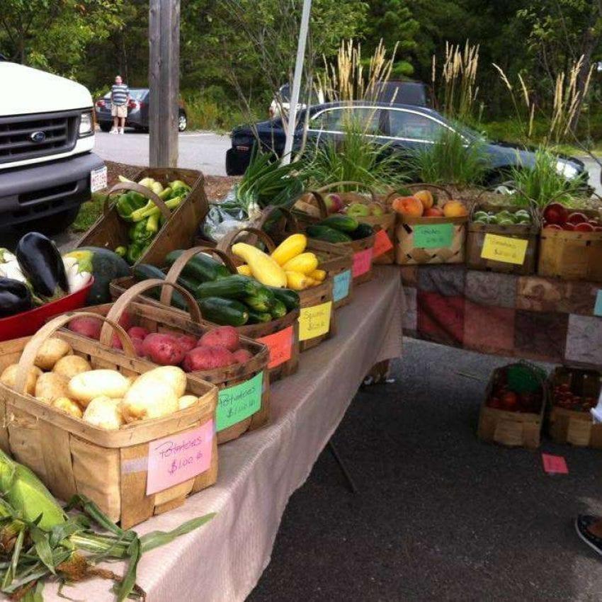 Farmers Market of Middleborough
