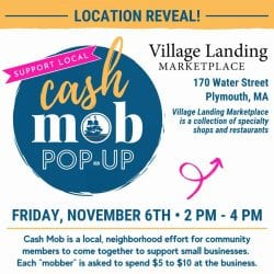 Plymouth Chamber Cash Mob