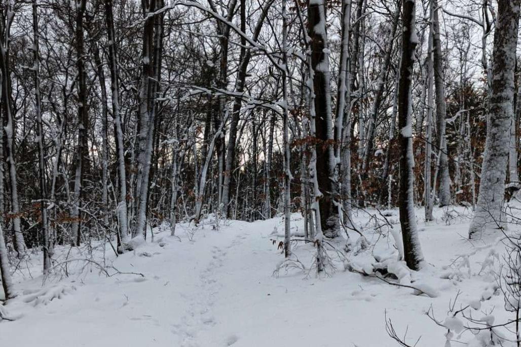 NSRWA winter series